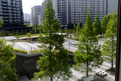 SIT Toyosu Campus widok z okna